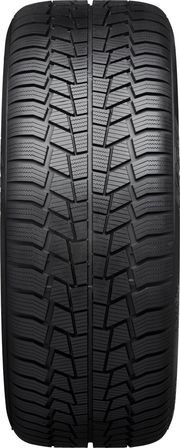 Viking WinTech 225/50 R17 98V XL